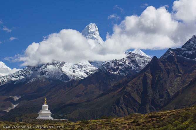 Путь на Эверест закрыли из-за мусора