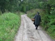 Спасатели в лесу ищут заблудившегося мужчину