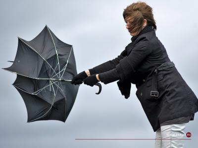 Спасатели предупредили о сильном ветре