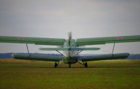 В Свердловской области экстренно сел самолет