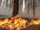 В Первоуральске введен особый противопожарный режим