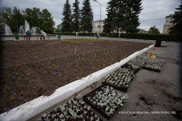 В центре Первоуральска начали высаживать цветы